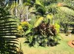 Casa_Orchidea_Coco45